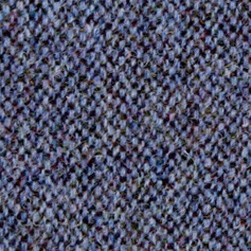Blue Fleck