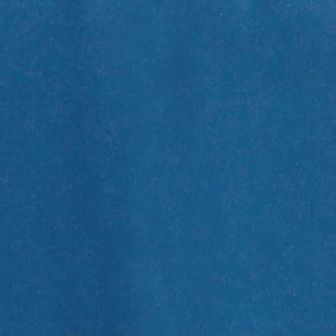 Blue Flower of Scotland