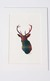 Handcrafted Tartan Silhouette: Stag